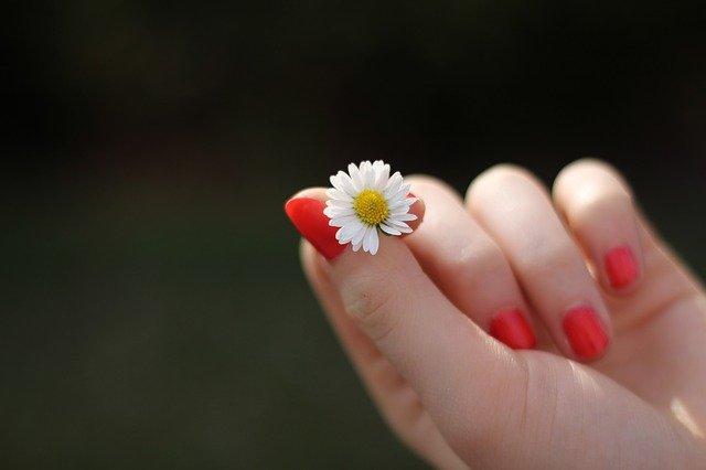 krótka płytka paznokcia